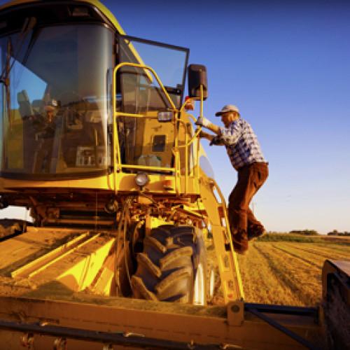 Rolnicy coraz chętniej ubezpieczają swoje mienie