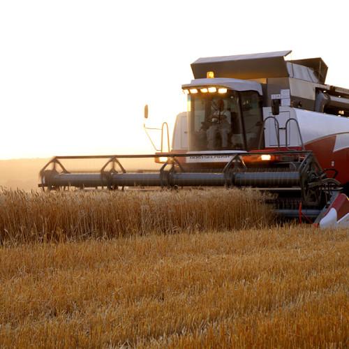 Zainteresowanie leasingiem maszyn rolniczych rośnie o 9 proc. rocznie. Rolnicy coraz chętniej korzystają z ofert banków, niekoniecznie spółdzielczych