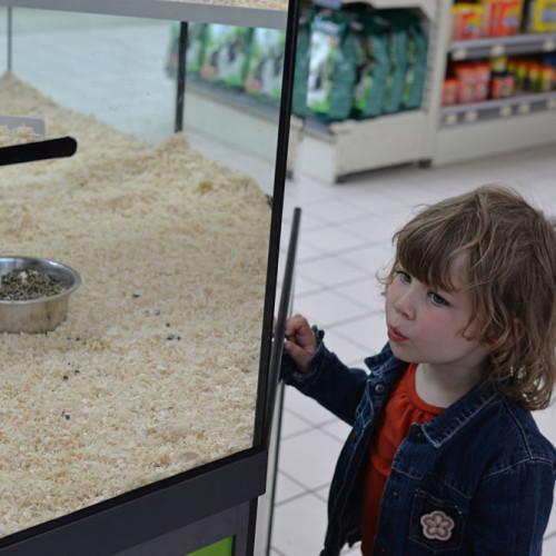 Dlaczego warto założyć sklep zoologiczny?