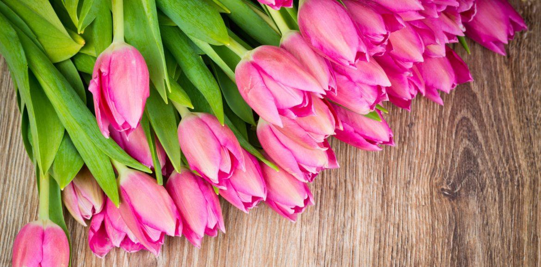 Kwiaty – sposób na biznes