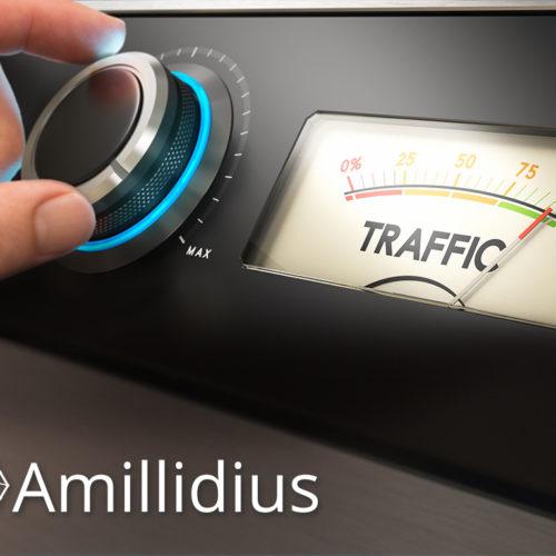 Amillidius – opinie i usługi studia stron internetowych Amillidius