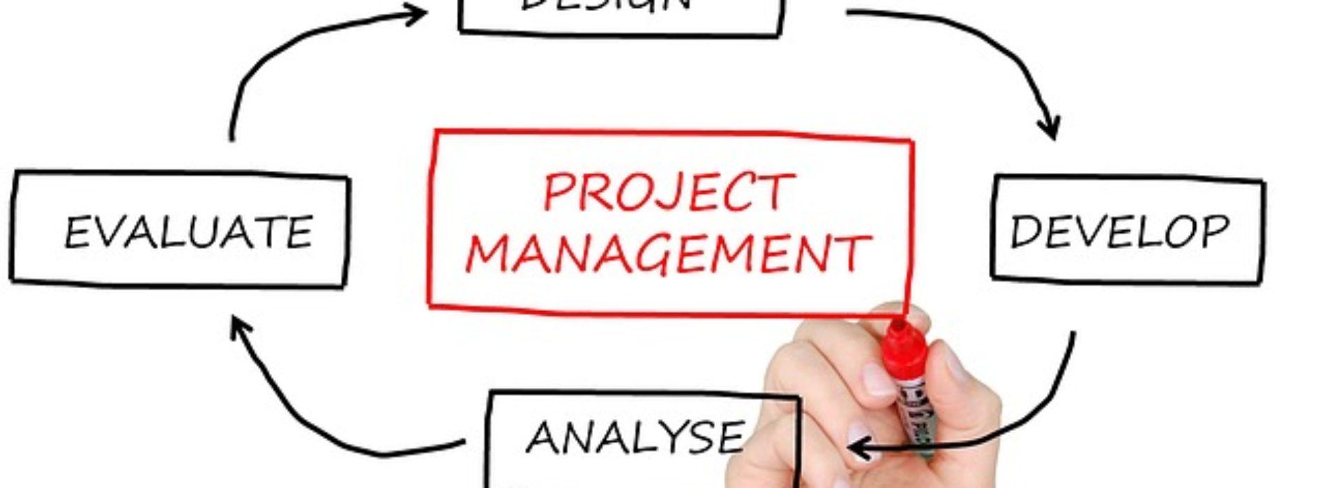 Agile Project Management – jak dobrze zarządzać projektami?