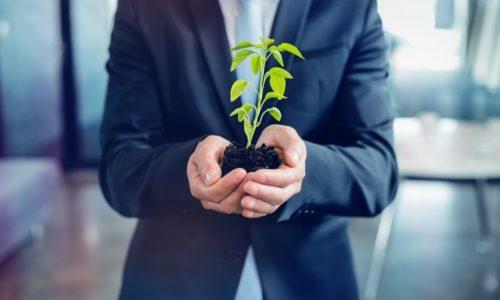 3 kroki do ekologicznego biura, czyli zero waste w praktyce