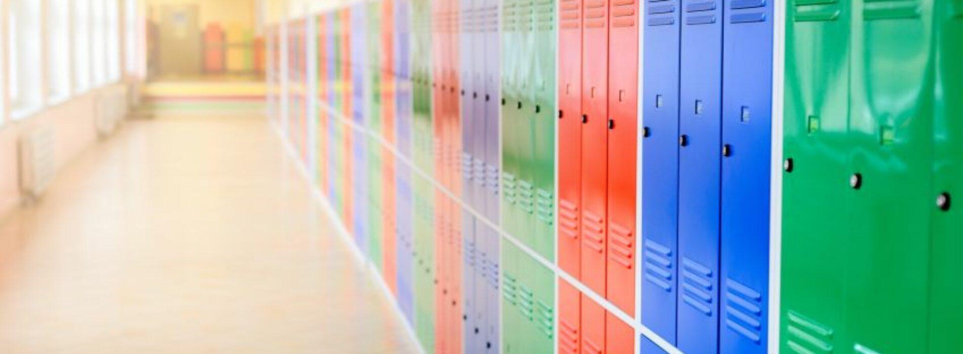 Zastosowanie metalowych szaf w przemyśle i edukacji